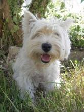 Profile picture for user Filipa Baptista